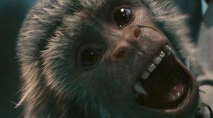 PETA critica a 'Piratas del Caribe' por culpa del mono de Barbossa
