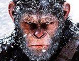 'La guerra del planeta de los simios' emociona a la crítica en las primeras reacciones