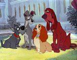 La cruel escena de 'La dama y el vagabundo' que Disney eliminó y otras curiosidades