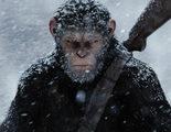 Matt Reeves: 'Los simios somos nosotros, nos vemos en ellos porque somos animales'