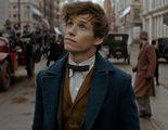 'Animales fantásticos 2': Confirmados nuevos personajes, regresos y la sinopsis