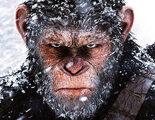 'La guerra del planeta de los simios' quiere el Oscar a Mejor Película
