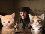 'Juego de Tronos': Los fans recrean con gatos una de las mejores escenas de la séptima temporada