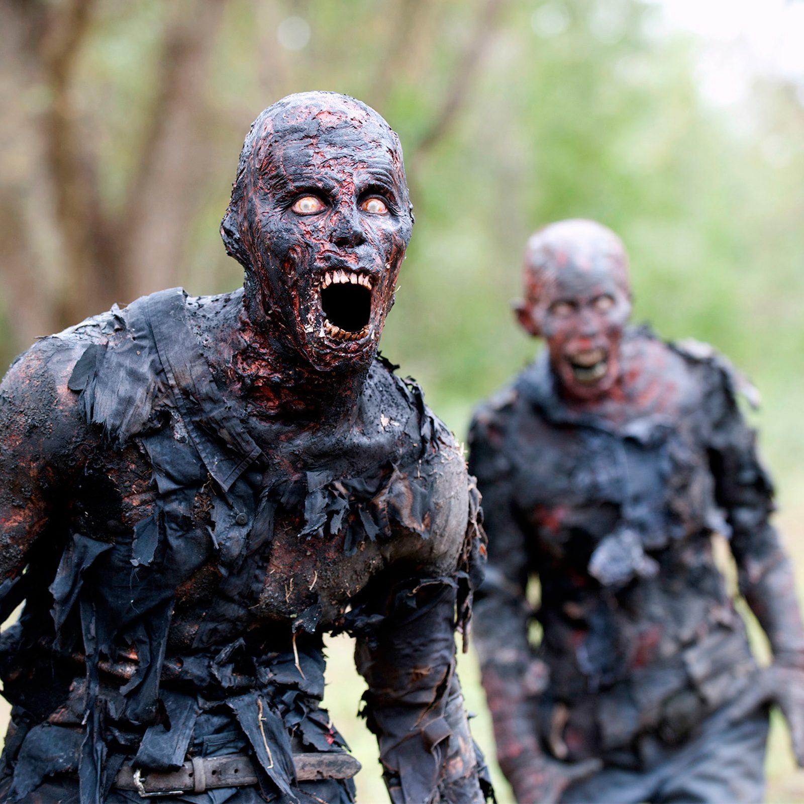 The Walking Dead Fotos