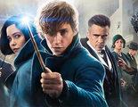 Nueva imagen de 'Animales fantásticos 2' con guiño a la saga 'Harry Potter'
