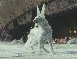 Descubre cómo se hicieron los zorros de cristal de 'Star Wars: Los últimos Jedi'