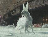 'Star Wars: Los últimos Jedi': Por fin descubrimos más información sobre los zorros de cristal