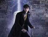 'Animales Fantásticos 2': Newt Scamander y Dumbledore protagonizan dos nuevas imágenes