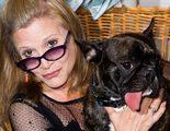 'Star Wars: Los últimos Jedi' convierte al perro de Carrie Fisher en un alien