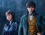 'Animales Fantásticos: Los crímenes de Grindelwald': Nueva imagen de Newt y Tina