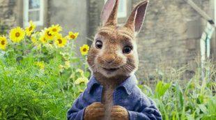 'Peter Rabbit' se ve envuelta en una inesperada polémica