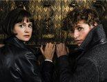 Primer tráiler de 'Animales Fantásticos: Los crímenes de Grindelwald' con Johnny Depp y Jude Law
