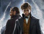 El tráiler de 'Animales fantásticos 2' enfada a muchos fans de 'Harry Potter' por un supuesto fallo