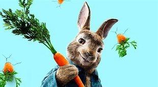 'Peter Rabbit' y su propuesta familiar lideran en la taquilla española