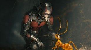 Las teorías de 'Vengadores 4' que han salido del tráiler de 'Ant-Man y la Avispa'