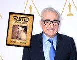 """Una enfermera demanda a Martin Scorsese porque su perro la atacó y le dejó """"heridas permanentes"""""""