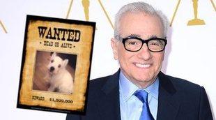 """Acusan al perro de Scorsese de dejar """"heridas permanentes"""" a una enfermera"""