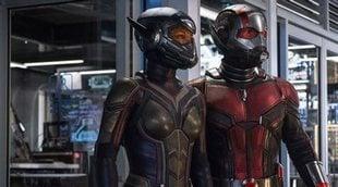 Estas declaraciones de Evangeline Lilly cobran un nuevo sentido tras 'Ant-Man y la Avispa'