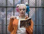 'Birds of Prey' podría ser la primera película de DC con un personaje abiertamente homosexual