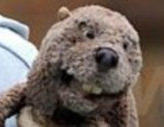 Mel Gibson ya rueda 'The Beaver'