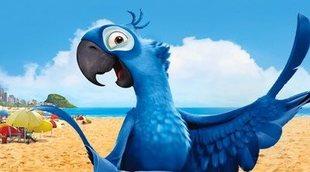 El ave azul que inspiró la película 'Río' se ha extinguido