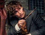 'Animales Fantásticos': Unas varitas gigantes en Londres celebrarán el estreno de 'Los crímenes de Grindelwald'
