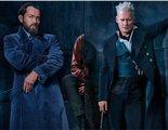 'Animales Fantásticos': Dos actores de 'Harry Potter' regresan para un momento muy importante del tráiler