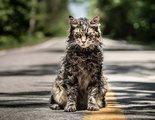 'Cementerio de animales': Primeras imágenes de la nueva adaptación de la novela de Stephen King
