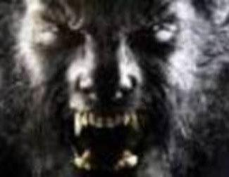 Segundo tráiler de 'The Wolfman'