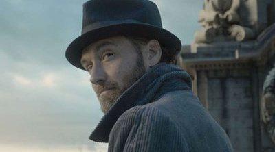 ¿Cuál será el papel de Dumbledore en la saga 'Animales fantásticos'?