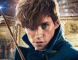 J.K. Rowling promete respuestas en 'Animales Fantásticos 3'