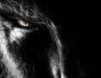 Primeros carteles de 'The Wolfman'