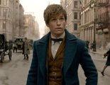 'Animales Fantásticos: Los crímenes de Grindelwald': Eddie Redmayne asegura que el rodaje fue agotador