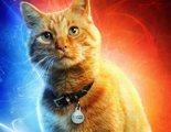 Todo lo que tienes que saber de Goose, el gato de 'Capitana Marvel': origen, teorías...