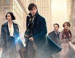 'Animales Fantásticos 3': J.K. Rowling está trabajando para hacerla mejor que 'Los crímenes de Grindelwald'