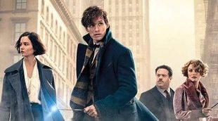 """J.K. Rowling está trabajando para que 'Animales Fantásticos 3' sea """"mejor"""""""