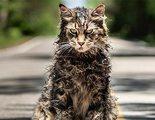 Descubre lo terrorífica que es 'Cementerio de animales' en esta nueva featurette