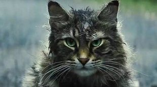 El gran cambio de 'Cementerio de animales' fue aprobado por Stephen King