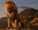 'El Rey León': Un vídeo compara el último tráiler con la versión animada, y no pueden parecerse más