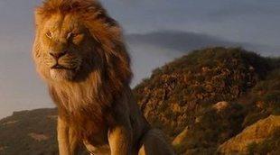 El nuevo tráiler de 'El Rey León' comparado con la película original