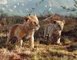 'El rey león': Nuevas imágenes icónicas y detalles del remake en acción real