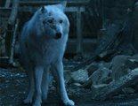 'Juego de Tronos': Esta teoría explica por qué Jon Snow abandona a Fantasma y sus consecuencias