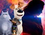 'Mascotas 2' lidera la taquilla de Estados Unidos y 'X-Men: Fénix Oscura' obtiene el peor estreno de la saga