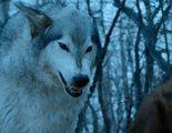 'Juego de Tronos' descartó una batalla con cincuenta lobos huargos en su octava temporada