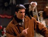 Marcel, el mono de Ross en 'Friends', vuelve a la televisión con 'Y: The Last Man'