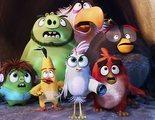 John Cohen ('Angry Birds 2'): 'Con esta película queríamos contar la historia de los personajes más allá del videojuego'