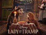 'La dama y el vagabundo': Primer tráiler del remake en acción real para Disney+