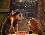 'La dama y el vagabundo': Yvette Nicole Brown adopta a uno de los perros de la película