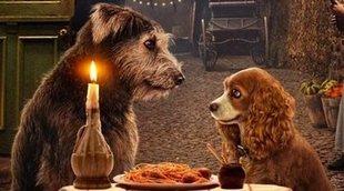 Yvette Nicole Brown ha adoptado a uno de los perros de 'La dama y el vagabundo'