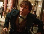 Eddie Redmayne quiere ser Enigma en la película de Batman de Robert Pattinson